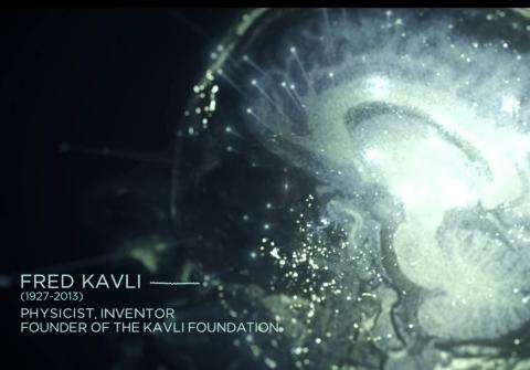 Kavli Institute
