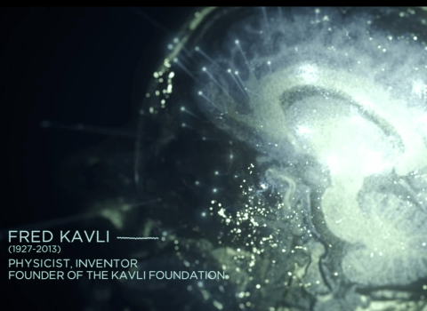 Kavli Institute
